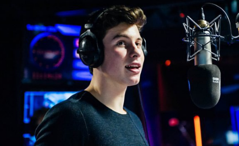 Shawn Mendes to Star in Ivan Reitman's Musical 'Summer of Love'