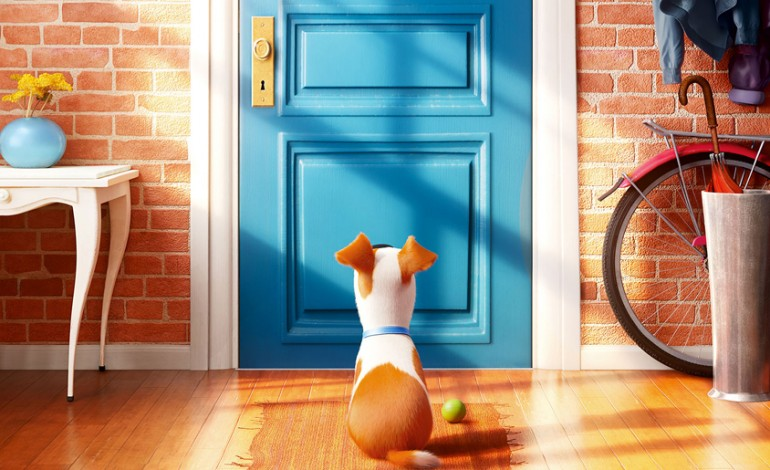 Watch the Trailer for Universal's 'The Secret Life of Pets'
