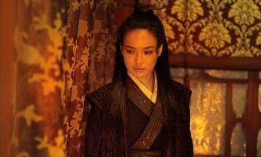 'The Assassin' Chosen as Taiwan's Oscar Bid
