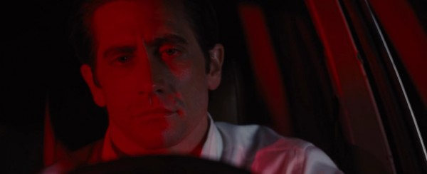 nocturnal animals 3 jake