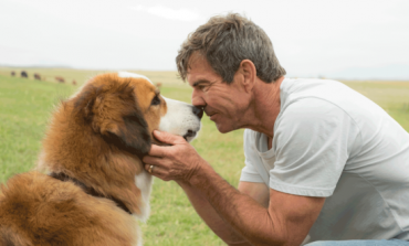 Movie Review - 'A Dog's Purpose'