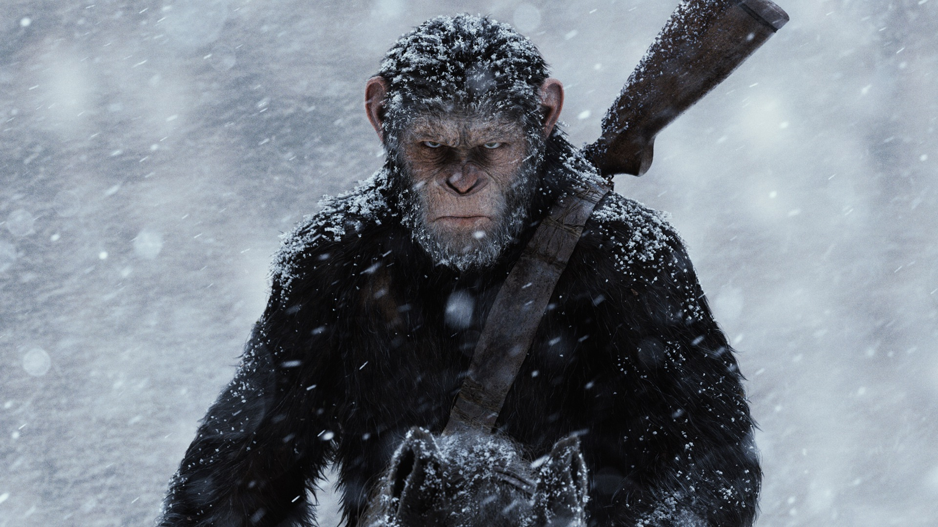 Movie Review – 'War for the Planet of the Apes'